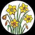 Static Window Cling in Daffodils design